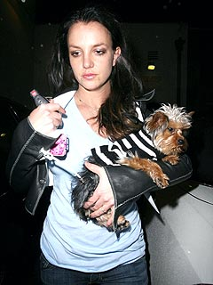 Britney's First Night Home from the Hospital