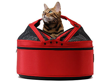 Sleepypod Keeps Your Kitty Cozy
