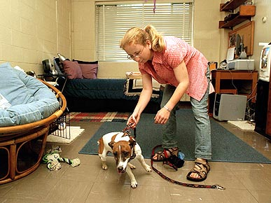 Pets on Campus? Yes, Say Many Universities