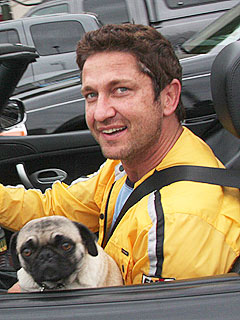 New York Man Accuses Gerard Butler of Hitting His Dog