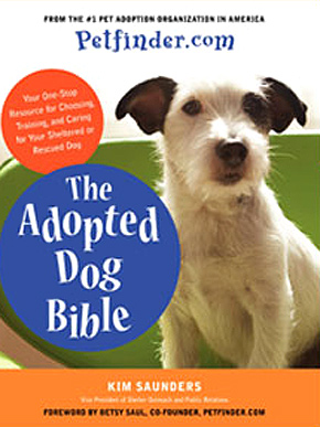 Adopted Dog Bible Says Be Prepared To Sleep With Your New Pup