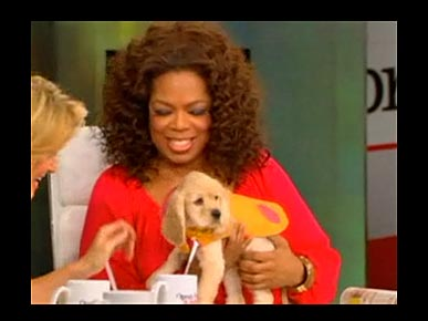 "Oprah: My Sick Pup Sadie is ""Hanging in There"""