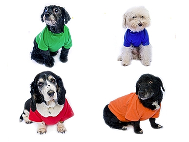 Love Vintage? Get Your Pup a Shirt Made From Classic Tees