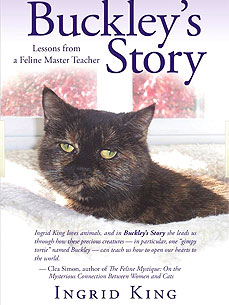 What Can You Learn from a Terminally Ill Cat? To Live in the Moment
