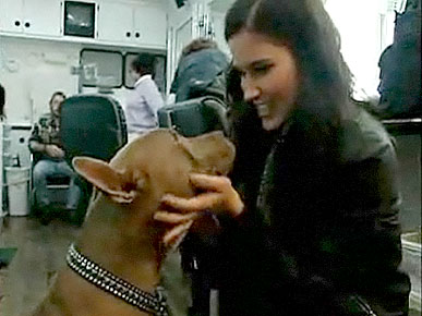 Exclusive Video:  Kellan Lutz, Sophia Bush Open Hearts to Rescue Animals