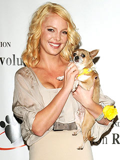Katherine Heigls Talks Dogs Tamber and Flora in USA Weekend Magazine