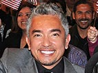 Video: Cesar Millan Answers Your Burning Pet Questions!