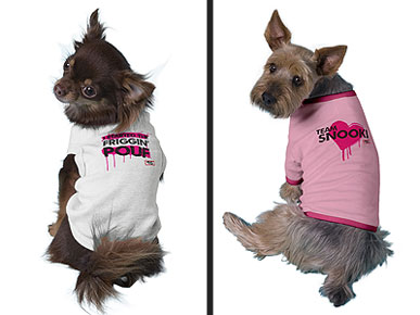 Paw-Pumping Like Champs: Dress Your Dog in 'Jersey Shore' Gear!