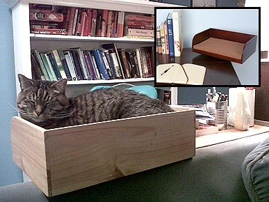 REVIEW: Kitt-In Box a Dream for Snoozing Keyboard Cats