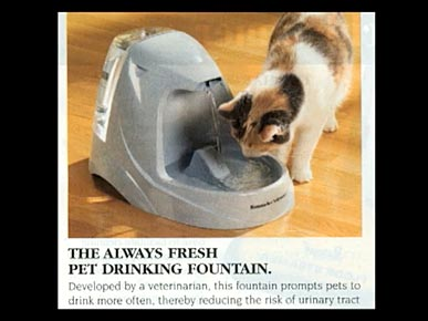 Friday's Funny Video: SkyMall Kitties!