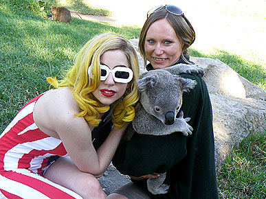 Spotted: Pawparazzi Catch Lady Gaga Chilling with a Koala