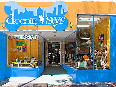 Treats to Try: Doggie Style's Philly Day Camp, Plus Beach Tips!