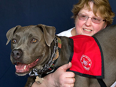 Rescued Pit Bull Defies Deformity Through Therapy Work