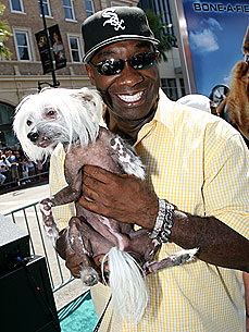 Are Michael Clarke Duncan's Cats Plotting Against Him?