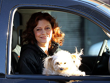 Susan Sarandon&#39;s Pooch Penny Catches the Acting Bug