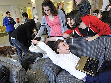 Therapy Dogs Give Stressed Tufts University Students a Study Break