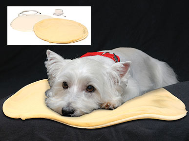 Ward Off the Chill with Warming Pet-Zzz-Pads