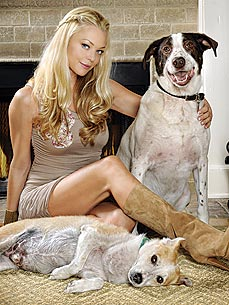 Glee's Charlotte Ross: 'Why Shelter Dogs are Awes