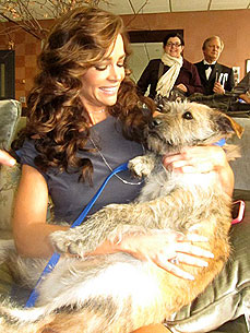 Denise Richards Adopts a New Dog – While Co-Hosting 'The View'