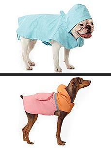Keep Your Dogs Dry with Cute Rain Gear by Martha Stewart Pets