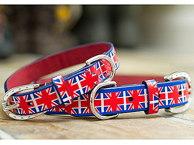 Say Woof to Will & Kate With Mascot&#39;s Union Jack Collar