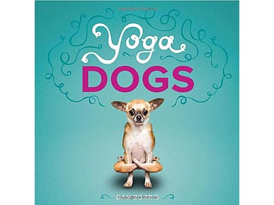 &#39;Yoga Dogs&#39; Book Puts Pooches In Impossible Poses
