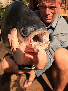 'River Monsters' Returns with Weirder, Deadlier Fish