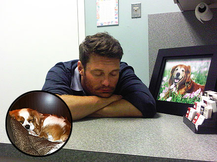 Ryan Seacrest and Julianne Hough Make Emergency Trip to the Vet