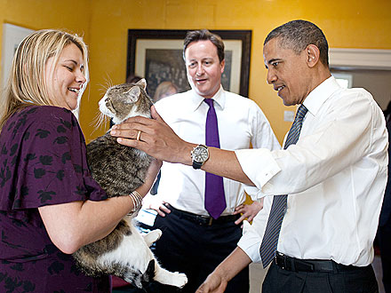 President Obama Meets Larry, the British Prime Minister's Cat