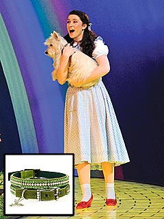 Toto Gets Emerald Bling for New Wizard of Oz