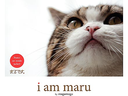 Maru Book, I Am Maru, Gets English Translation