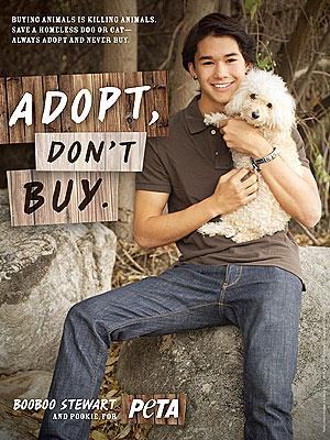 Photo of Booboo Stewart & his  Dog Tika