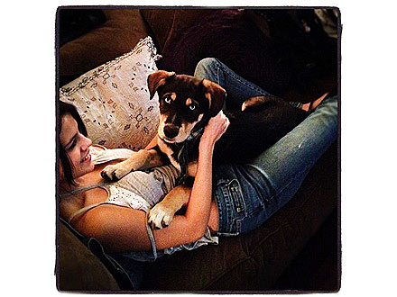 Selena Gomez&#39;s Dog Baylor: Photo