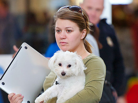Kelly Clarkson Bonds with Her Dogs at Seattle Hotel