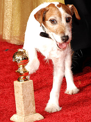 Dog from The Artist, Uggie, Charms at Golden Globes