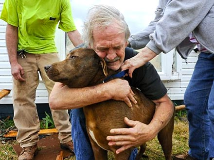 Dog Reunited with Owner After Alabama Tornado