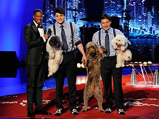'America's Got Talent': Who Do You Think Should Win?