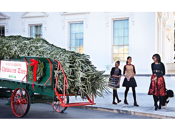 Michelle Obama and Daughters Welcome Christmas Tree at White House
