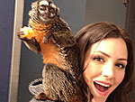 Wild Things: Stars Meet Exotic Animals! | Katharine McPhee