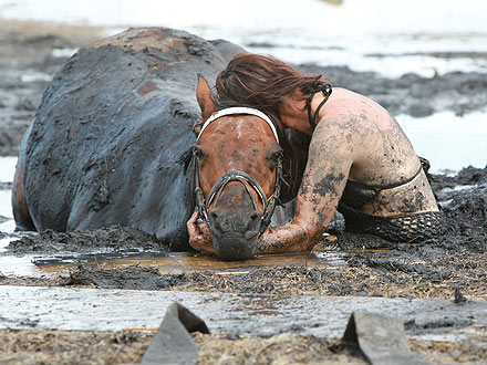 Horse Rescued from Deep Mud in Australia