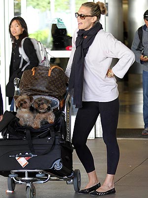 Molly Sims Pregnant, Wants to Include Dogs