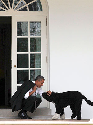 Presidential Health Break! Obama Takes a Breather with Bo