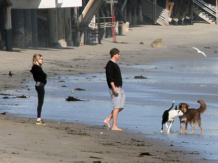 Amanda Seyfried Dating Josh Hartnet, Couple Takes Dogs to Beach