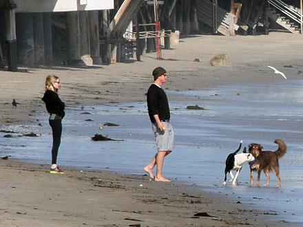 Amanda Seyfried Dating Josh Hartnet, Couple Takes Dogs to Beach