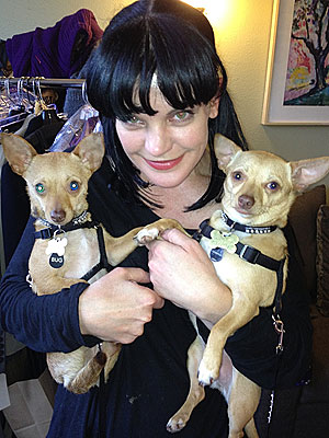 Pauley Perrette Adopts Two Rescue Dogs