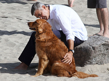 George Clooney Goes Barefoot on the Beach with an Adorable Dog