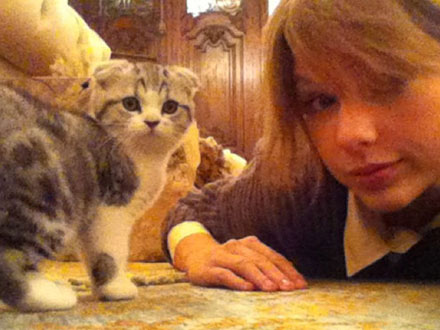 Taylor Swift's Cat Plays Fetch: Video