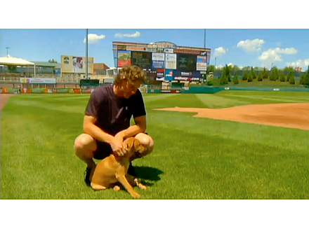 New Mexico Baseball Team Adopts Blind Puppy