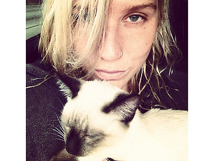 Ke&#36;ha Asks Fans to Name Her Stray Cat on Twitter