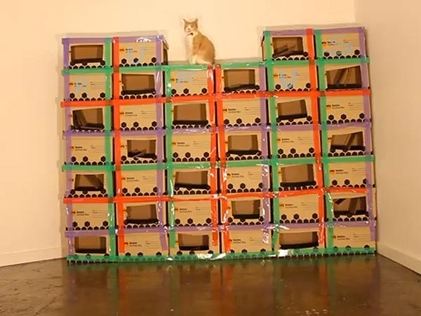 That&#39;s Love! Man Builds (Cardboard) Castle for His Cat